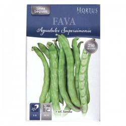 Hortus Semi di Fava Aguadulce Supersimonia Sel. Samba da 250 grammi
