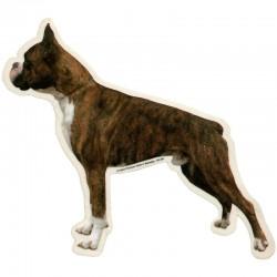 Vetrofania adesiva con cane Boxer Intero - 2 adesivi da 15x15 cm