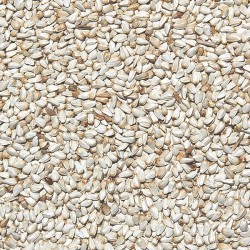 ITALMIX CARDY BIANCO semi di cardo bianco Mangime sfusi in conf. da 800gr
