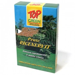 TOP GREEN Prato Rigenervit Sementi Per tutti i tipi di pratobreggiato 1 kg x 40mq