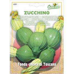 Hortus Ortovivo semi di Zucchino Tonda Chiara di Toscana