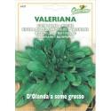 Hortus Ortovivo Semi di Valeriana D'Olanda a Seme Grosso
