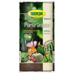 TERFLOR Terriccio Piante Grasse 5 lt per rinvasi di cactacee e succulente