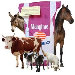 Progeo RuraL Fioc da 25 kg Pellet + Fioccato Mangime Complementare Per Bovini, Ovi-Caprini ed Equini