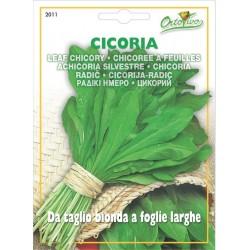 Hortus Ortovivo - semi di Cicoria da taglio bionda a foglie larghe