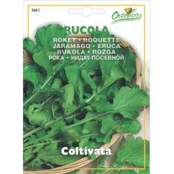 Hortus Ortovivo - semi di Rucola coltivata