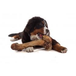 Osso di Prosciutto Maxi per Cane da 330-390 gr