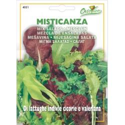 Hortus Ortovivo - semi di Misticanza di lattughe indivie cicorie e valeriana
