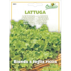 Hortus Ortovivo - semi di lattuga bionda a foglia riccia