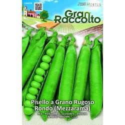 Hortus Gran Raccolto - semi di Pisello a grano Rugoso Rondo (Mezzarama)