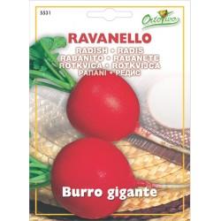 Hortus Gran Raccolto - semi dI Ravanello Burro Gigante