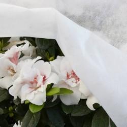 VERDELOOK Tessuto TNT bianco 1,6x10mt per protezione colture