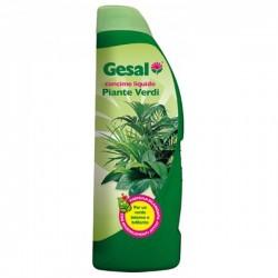 GESAL Concime Liquido Piante Verdi da 1 litro