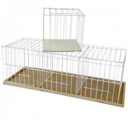 Gabbia da esposizione per colombi a 3 posti con fondo in legno 35x95x32 cm