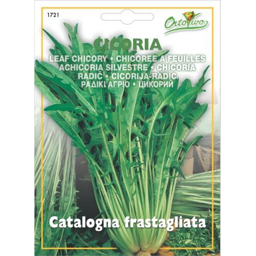 Hortus Ortovivo - semi di Catalogna frastagliata