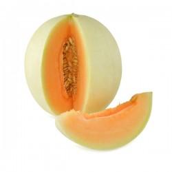 Melone Liscio in Vaso da 14 cm