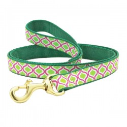 UP COUNTRY GREEN KISMET Guinzaglio con Collare in Nylon per Cane TG.XL 25x1200 mm