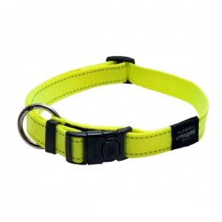 ROGZ  Collare in Nylon FLUO per Cane 10mm x 20-31cm