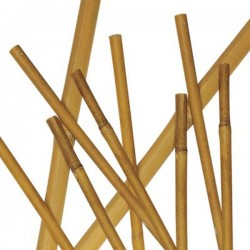 Canna di Bamboo h 2100 x Ø 18-20 mm