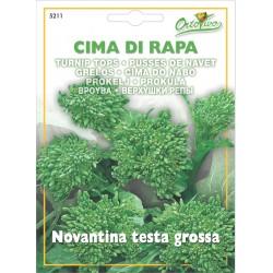 Hortus Ortovivo - semi di Cima di rapa novantina testa grossa