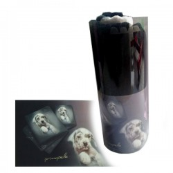 PRIMA PELLE Ascigamano in Cotone Assorbente per Cani e Gatti 110x55 cm