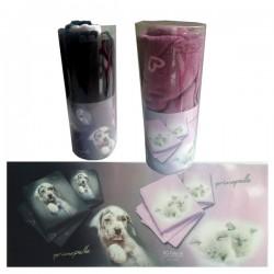 PRIMA PELLE Set Bagno Ascigamani in Cotone Assorbente per Cani e Gatti 110x55 cm e 55x40 cm