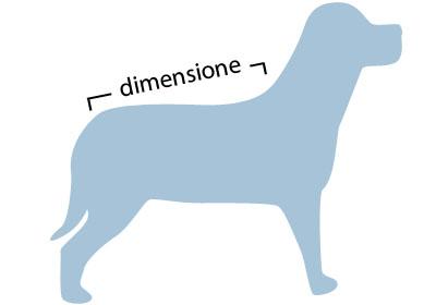 taglia abbigliamento cane