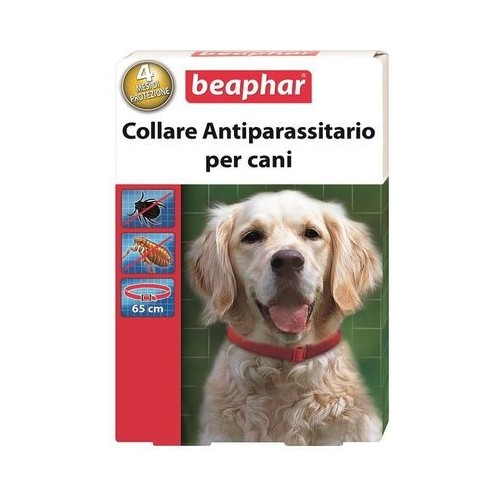 Lovely Ciotola Doppia In Plastica Con Portaciotola Antiformiche Per Cani E Gatti Record Pet Supplies